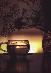 Afternoon Tea (Janey Song) Tags: afternoon tea cup flower sunset glass reflection stilllife leicamtyp240 ernstleitzgmbhwetzlar135mmf45 vancouvercanada omot table