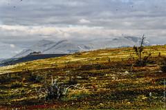 1998 Ural Mountains-7 (Alexander Kondakov) Tags: 1998 kodak kodakektachromee100vs landscape lens perm photobyalexanderkondakov russia ural uralmountains film minolta700si minoltaaf2885mmf3545 minoltaaf75300mmf4556 old