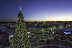 DSC_0103 Conway Christmas tree (snolic...linda) Tags: arkansas 501 christmas conway