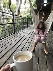 coffee in the hammock (The Spohrs Are Multiplying...) Tags: fixer upper