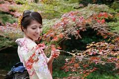232012 (Yolanda Su) Tags:   maple  kimono