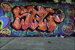 SFL (Alex Ellison) Tags: sfl ctr cityrollers mh mhb northlondon urban graffiti graff boobs halloffame hof