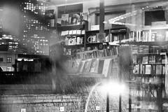 Living room beat (Foodo Dood) Tags: fujifilm xt1 35mm citylightsbookstore northbeach beatliterature beatnik poetryroom home rain drops jackkerouacalley sf