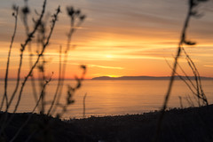 Sunset over Catalina Island (Rabitbuster) Tags: catalina island wine mixer sunset top world laguna beach hike hiking nature boat foreground bokeh