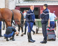 bootsservice 07 8221 (bootsservice) Tags: arme army uniforme uniformes uniform uniforms cavalerie cavalry cavalier cavaliers rider riders cheval chevaux horse horses bottes boots riding boots weston eperons spurs gants gloves gendarme gendarmerie militaire military garde rpublicaine paris
