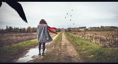 Back to the ashes (Sirliss) Tags: sirliss winter fall autumn ashes ruin path birds coat