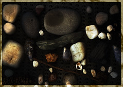 Beach Treasure (SJKReid) Tags: ireland sea art beach stone treasure scanner stones shell snail eire pebble filter twig northern gmic