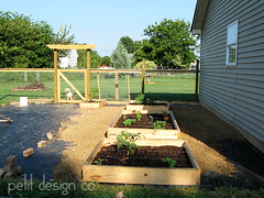 garden7 (Petit Design Co.) Tags: squarefootgardening raisedgardenbed weldedwirefence
