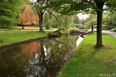 Brook Reflections (kev thomas21) Tags: park uk trees england tree green water grass liverpool brook seftonpark merseyside sefton