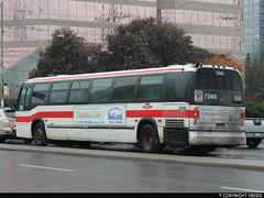 Toronto Transit Commission #7246 (vb5215's Transportation Gallery) Tags: toronto bus nova ttc transit 1998 commission wfd rts06