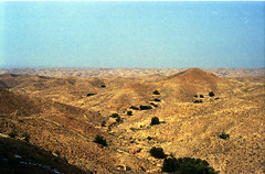 North of Sahara desert (GeirB,) Tags: sahara desert tunis scan scanned