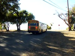 School Bus in Action (kevin42135) Tags: california blue school lake bus bird high all engine upper american a3 re lucerne cummins isc a3re