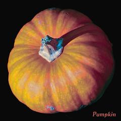 pumpkin (gtncats) Tags: nature pumpkin topaz gords collierville photographyforrecreation topazrestyle
