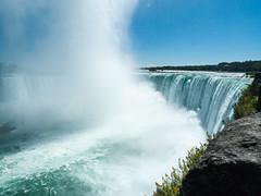 Niagara Falls (Le Petit King) Tags: toronto ontario canada niagarafalls niagara northamerica lakeontario gta daytrip businesstrip     2013 greatertorontoarea  bztrip  leschutesduniagara   panasoniclumixdmclx3   20130914