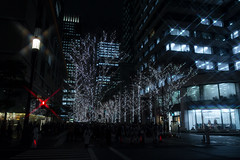 "Tokyo ""Marunouchi"" -Winter Illumination 2013-2014 (Tokyo, Japan) (t-mizo) Tags: christmas xmas light japan night canon tokyo illumination sigma    lr marunouchi lightroom       chuouku lr4 sigma175028 sigma1750 sigma1750mm sigma1750f28 sigma1750mmf28 eos60d sigma1750mmf28exdcoshsm sigma1750mmoshsm lightroom4 sigma1750mmf28exdcos sigma1750exdc"