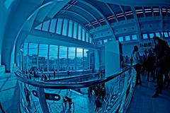 Cit Miroir (apgermain) Tags: blue water architecture eau photographie belgium sony sigma fisheye nostalgia piscine nostalgie lige sauvenire alpha900