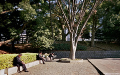 Japanese businessmen relaxing in a park (planetails ) Tags: portrait japan 35mm tokyo grain trio businessmen diagonals filmphotography ultrawideslim vivitaruws