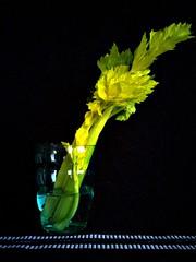 celery (kamenkaludov) Tags: nokia dng flickrandroidapp:filter=none lumia1020