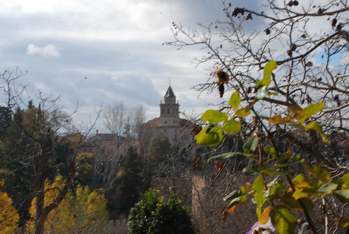 """Granada-DSC_0614_094 • <a style=""""font-size:0.8em;"""" href=""""http://www.flickr.com/photos/103823153@N07/12277040806/"""" target=""""_blank"""">View on Flickr</a>"""