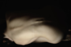 Skin (2Fstudio) Tags: lighting light portrait people black girl portraits project dark photography lights photo back nikon skin body portait pale pelle schiena obscure paleskin 2f d7000 2fstudio