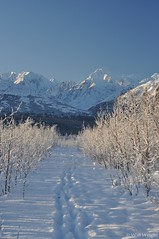 Alaska Range, Richardson Highway (18)
