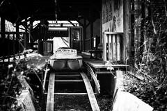 Ride (Jeroen Mooijman) Tags: park urban berlin monochrome deutschland mono ride dry monotone can ddr dried grayscale spree gdr greyscale berlijn urbex waterride plänterwald spreepark kulturpark jeroenmooijman