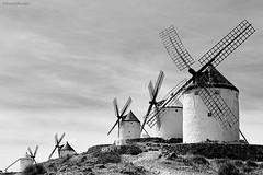 """""""-Mire vuestra merced respondi Sancho- que aquellos que all se aparecen no son gigantes, sino molinos de viento"""" (Sonia Montes) Tags: bw blancoynegro canon paisaje toledo molinos castillalamancha consuegra"""