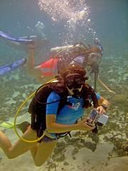 Clear & Sunlit (DivePhoto) Tags: coral divers photographer scuba cw cs reef