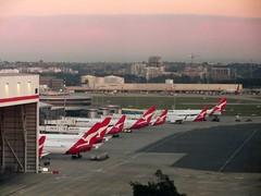 Sydney - Qantas Domestic terminal line up - 6:35am (Amateur-Hour Photography) Tags: sky canon airport aircraft planes syd qantas airliners sydneyairport planespotting sydneyaustralia yssy stamfordplazasydneyairport