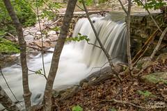 Massanutten dam (Photo Girl Canada) Tags: leaves rain creek river waterfall rocks dam rapids lopez massanutten runoff dellwebb