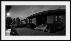 bad bear 175/365 (Andrew C Wallace) Tags: bear abandoned garden giant lawn bad suburbia australia victoria teddybear preston pad2014