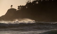 Offshore at One Tree (OzzRod) Tags: pentax k1 sigmadg120400mmf4556apohsm sigmaapoteleconverter2xexdg ocean sea waves surf surge breakers spay dawn headland beach onetree cuttagee intothesun