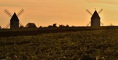 Les moulins de Chaillot (Mystycat =^..^=) Tags: moulin windmill paysage charentemaritime poitoucharentes france sunset coucherdesoleil soir lesmoulinsdechaillot