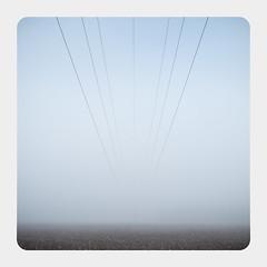 _power_lines (fot_oKraM) Tags: powerlines power lines strom stromleitung hochspannung hochspannungsleitung nebel stadtlohn nrw