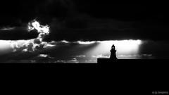 Lighthouse Lit (whistlingtent) Tags: lighthouse infra red mono black white clouds seabird seagull dark moody silhouette pier south shields north east coast england silhouettephotography
