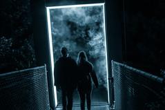 Portal (David Bishop Noriega) Tags: forestalumina light forest monochromatic bw david bishop noriega davidbishopnoriega