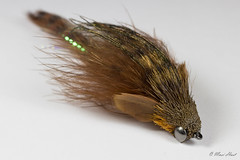 Big articulated sculpin (Masi Hast) Tags: flyfishing flytying