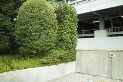 IMG_9648 (Dimitri SoyFeliz) Tags: japan shinjukuku shinjuku tokyo canon eosm eos 22mm 22mmf2 minimal minimalism minimalist newtopographics desolate outdoors hiragana