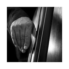 10-contrabass (Roberto Gramignoli) Tags: blackandwite bw musica music jazz contrabass contrabbasso mano mani hand play suonare strumentimusicali musicinstruments