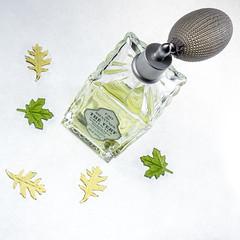 The Vert (lclower19) Tags: diy spray bottle thevert leaves green yellow 4652 522016 loccitane greentea