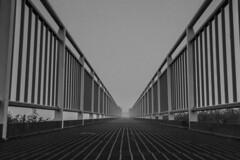 _S3A7433.10.16 (addy_graphy) Tags: spijkenisse blackandwhite monochrome bridge geometric lines architecture infrastructure