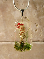Cladonia necklace (chaerea) Tags: jewelry jewellery necklace cladonia mycology fungi algae nature forest moss botanical