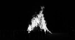 Slow Burn (MyColorblindEye) Tags: lehigh university fire bonfire fires trees tree wood silhouette black white light dark nigh nighttime photography long exposure flame burn flames burning fall autumn pep rally football lafayette students school college