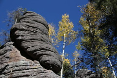 Grumpy Old Rock (lars hammar) Tags: whitemountains aspen fall fallcolors yellow yellowleaves trees rock rockformation