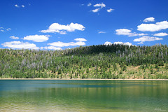 Navajo Lake, Utah (Pito Charles) Tags: usa america amerique utah country state united etatsunis unitedstates etat wild sauvage journey voyage trip roadtrip canon canoneos70d canon70d nature natural park parc national ete summer 2016 french francais lac lake navajo trees arbres water eau reflects reflets