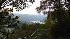 Blick vom Felsenweg auf Oberwesel und Rhein