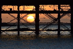 Sun setting under the pier as the starlings roost.... (karen leah) Tags: sunset water sea pier aberystwyth dusk starlings roost magical atmospheric unique striking stunning original