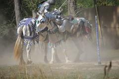 IMG_4760 (joyannmadd) Tags: horse rider joust spar duel warhorse hammoind louisiana armour outdoor game war combat midevil larenfest makelovenotwar flickrfriday