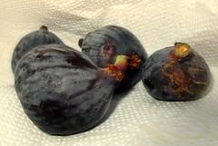 IMG_0135 (SyrianSindibad) Tags: tunisia tunisie  kesra figs