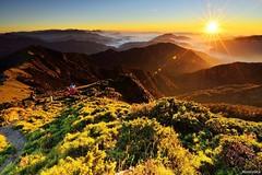 Mountains @_hehuanshan _Taiwan (monbydick) Tags: exposure hehuanshan monbydick national nikon park scenery landscape sky taiwan taroko                peaceful  sunset a012 tamron1530mmf28